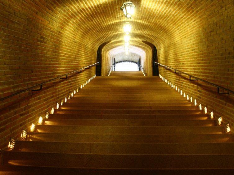 Wein mit LEDs verbinden – die richtige Beleuchtung für Ihren Keller