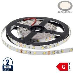 60SMD/m 4,8W/m 12V Premium LED Streifen 3528 Neutralweiß 5m