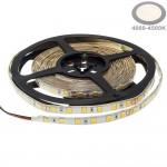 60SMD/m 16W/m 24V Professional Led Streifen 5054 Neutralweiß 5m Spritzwassergeschützt