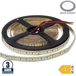 196SMD/m 20W/m 24V Professional LED Streifen 2835 Kaltweiß 5m