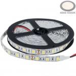 60SMD/m 14,4W/m 12V Premium LED Streifen 5050 Neutralweiß 5m