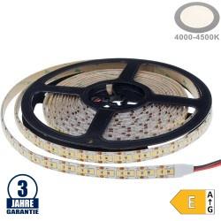 198SMD/m 20W/m 12V Professional LED Streifen 2835 Neutralweiß 5m Spritzwassergeschützt