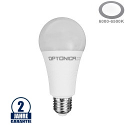 19W LED E27 A65 Birne Kunststoff Kaltweiß